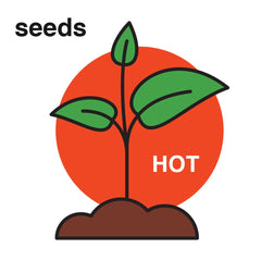 PuckerbuttPepper Company,all natural,Organic Scotch Bonnet Peach hot pepper seeds,USDA Organic