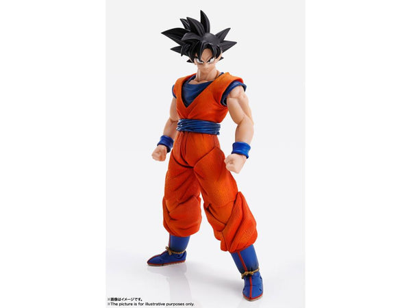 Imagination Works Goku from Dragon Ball Z