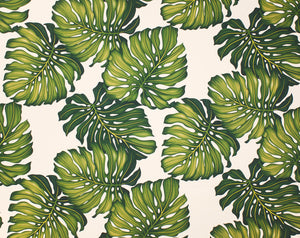 EH-3C06 Ohana Cream (Cotton Twill) - TrendtexFabricsMonstera Leaves Printed All-Over