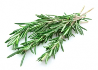 rosemary oil 3 graces beauty