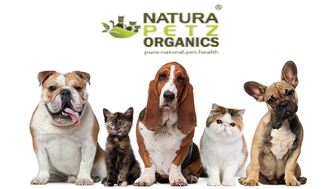 Natura Petz Organics manufactures organic herbs, super foods and supplements for dogs and cats