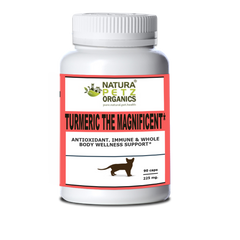 TURMERIC THE MAGNIFICENT FOR CATS ORGANIC CURCUMA FOR CATS CAT TURMERIC