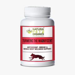 Turmeric the Magnificent Natura Petz Organics dog turmeric dog curcuma cat turmeric cat curcuma