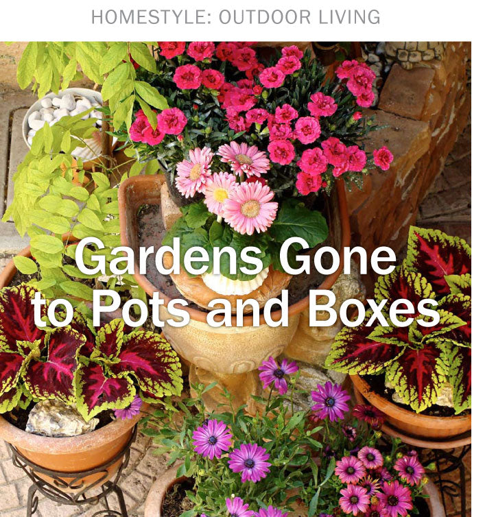 HomeStyle Outdoor Living - The Content Store