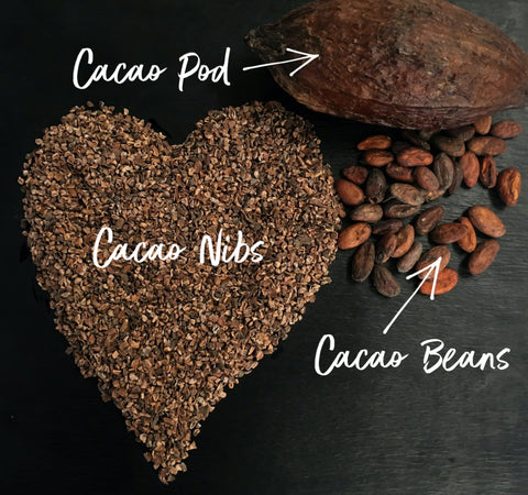 Cacao pod, nibs and beans