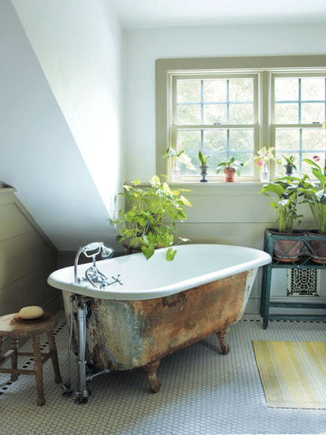 How To Buy And Care For A Clawfoot Tub 101 Hippo Hardware