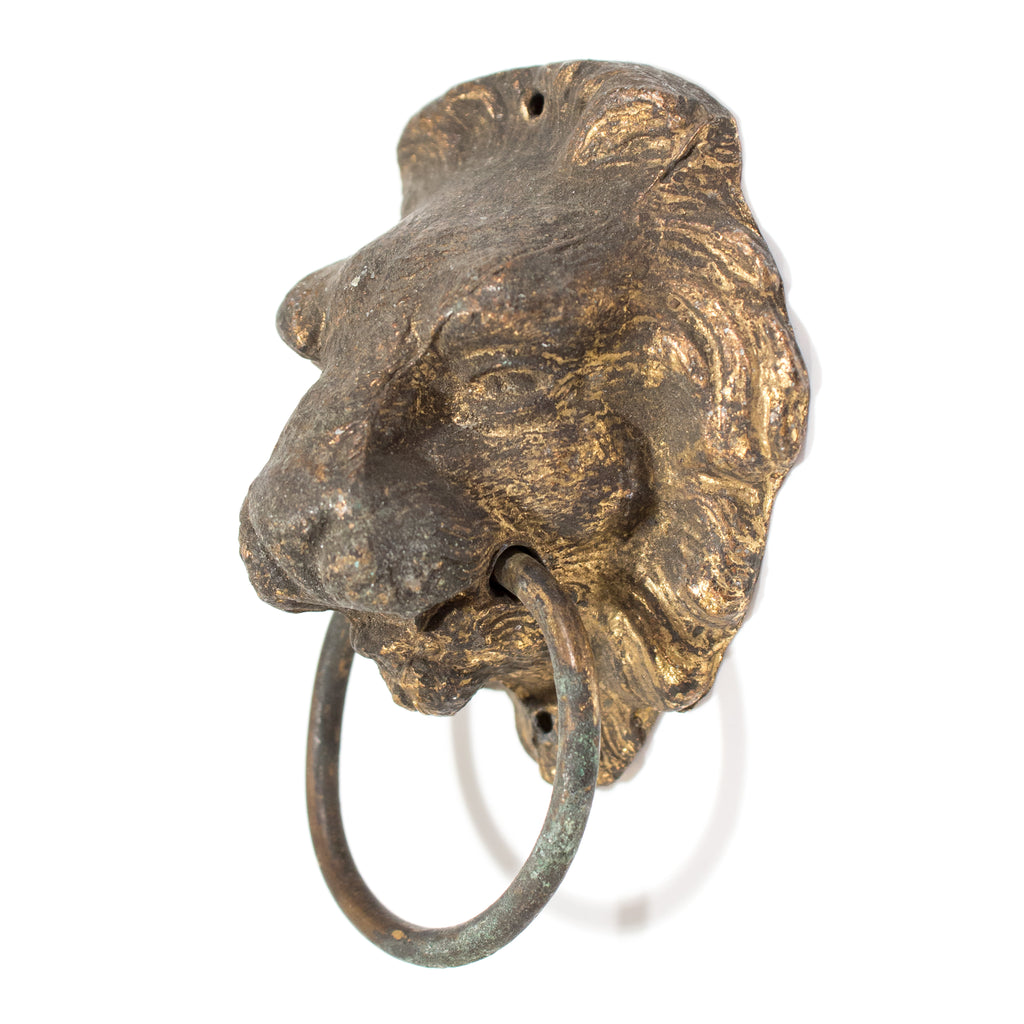 Lion Ring Pull - Brass Antique