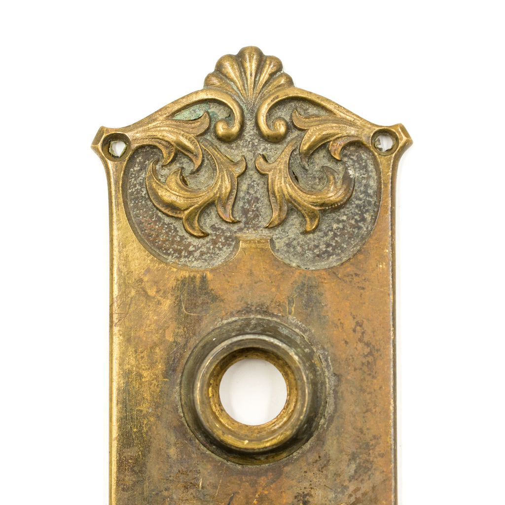 Cast Bronze Nouveau Door Plate Escutcheon