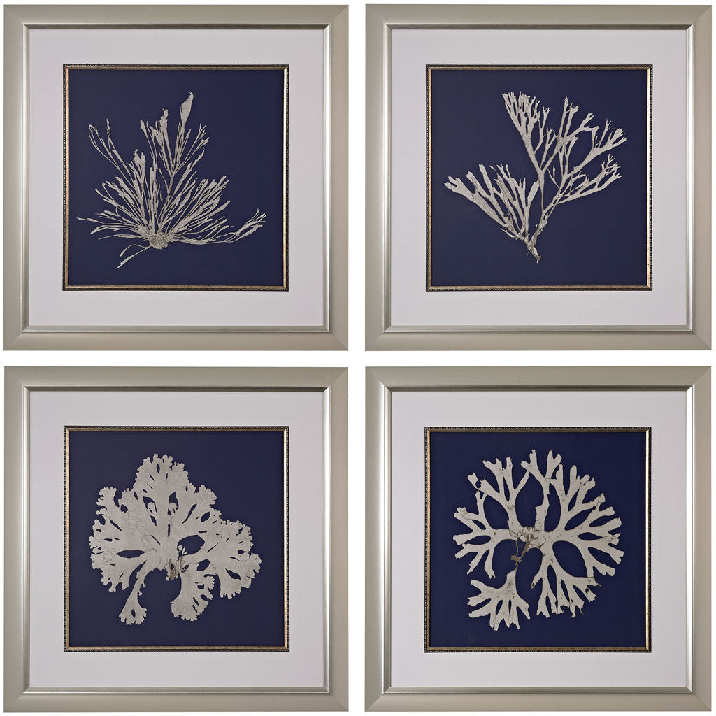 Sea Life On Navy Giclee (Set of 4)