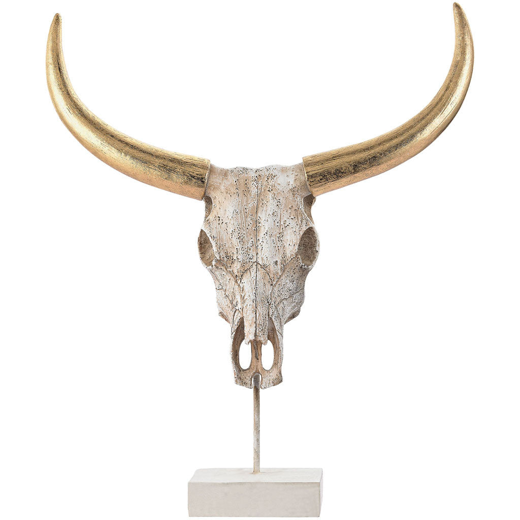 Paul Small Buffalo Skull