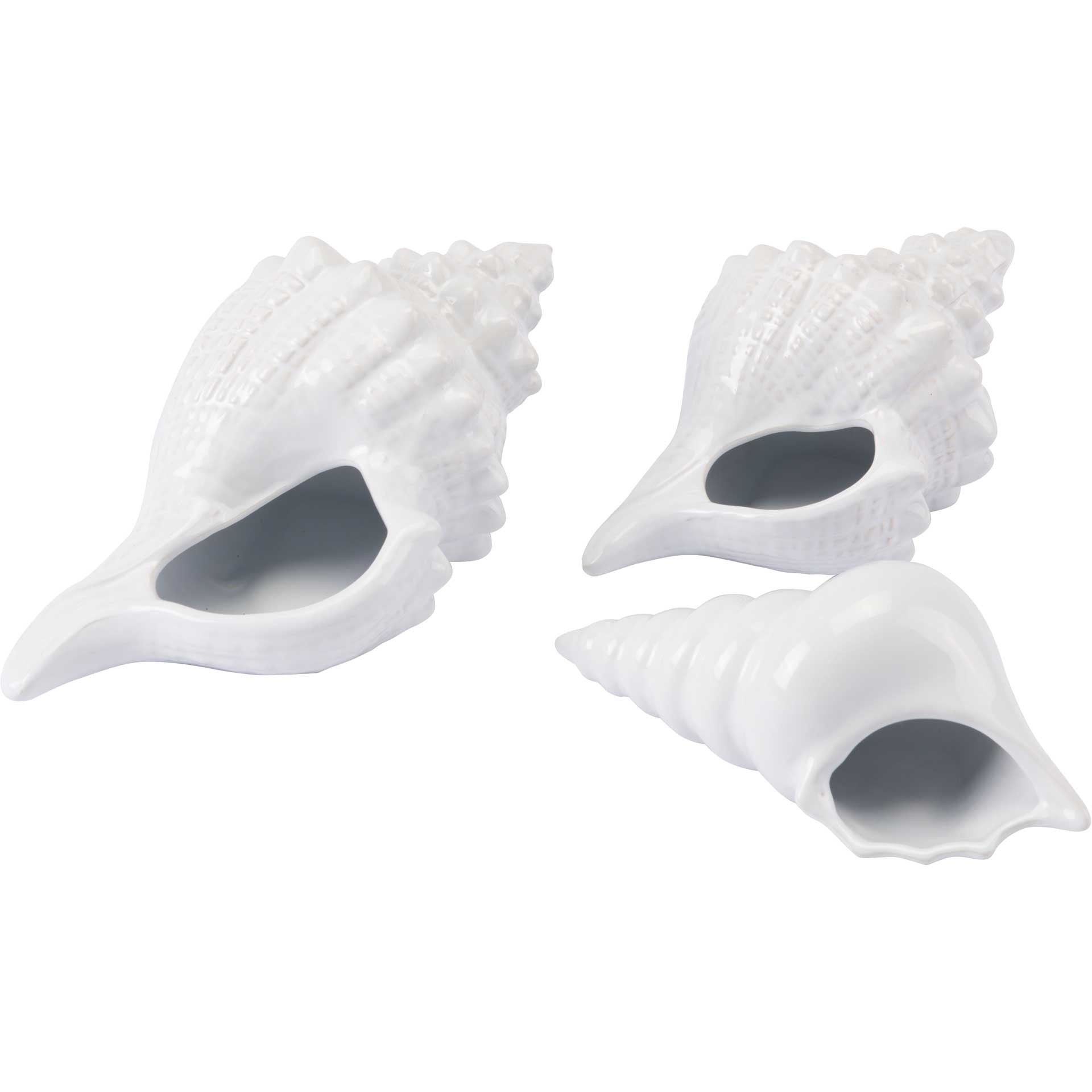 Coastal Ceramic Shell White