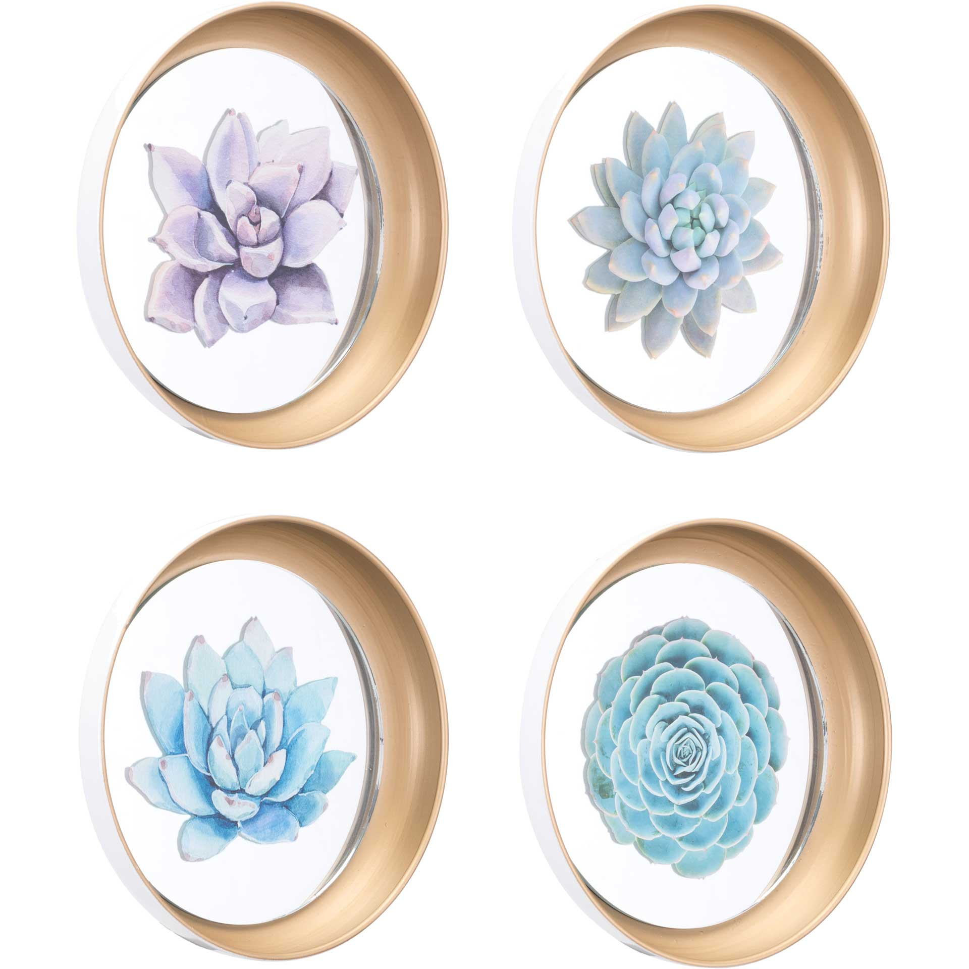 Pastel Succulents Plate (Set of 4)