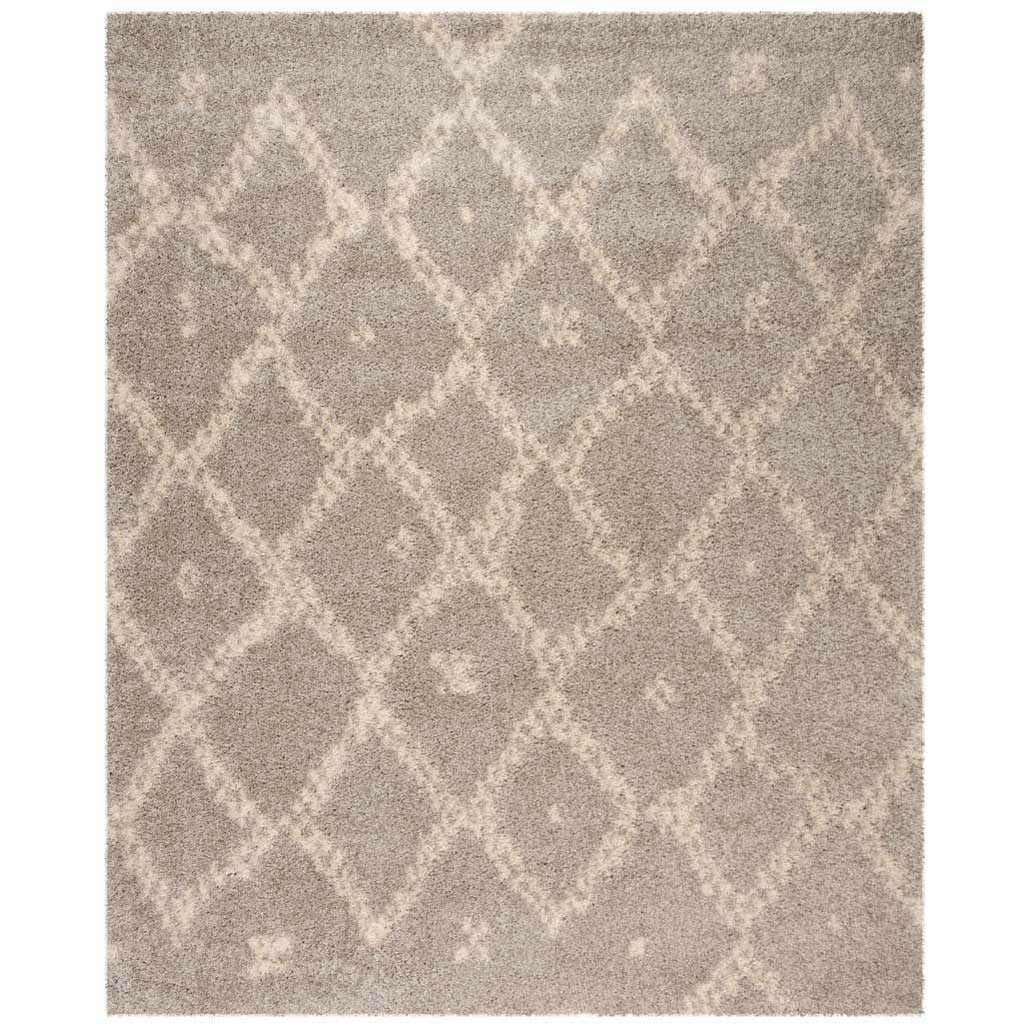 Arizona Shag Gray/Ivory Area Rug