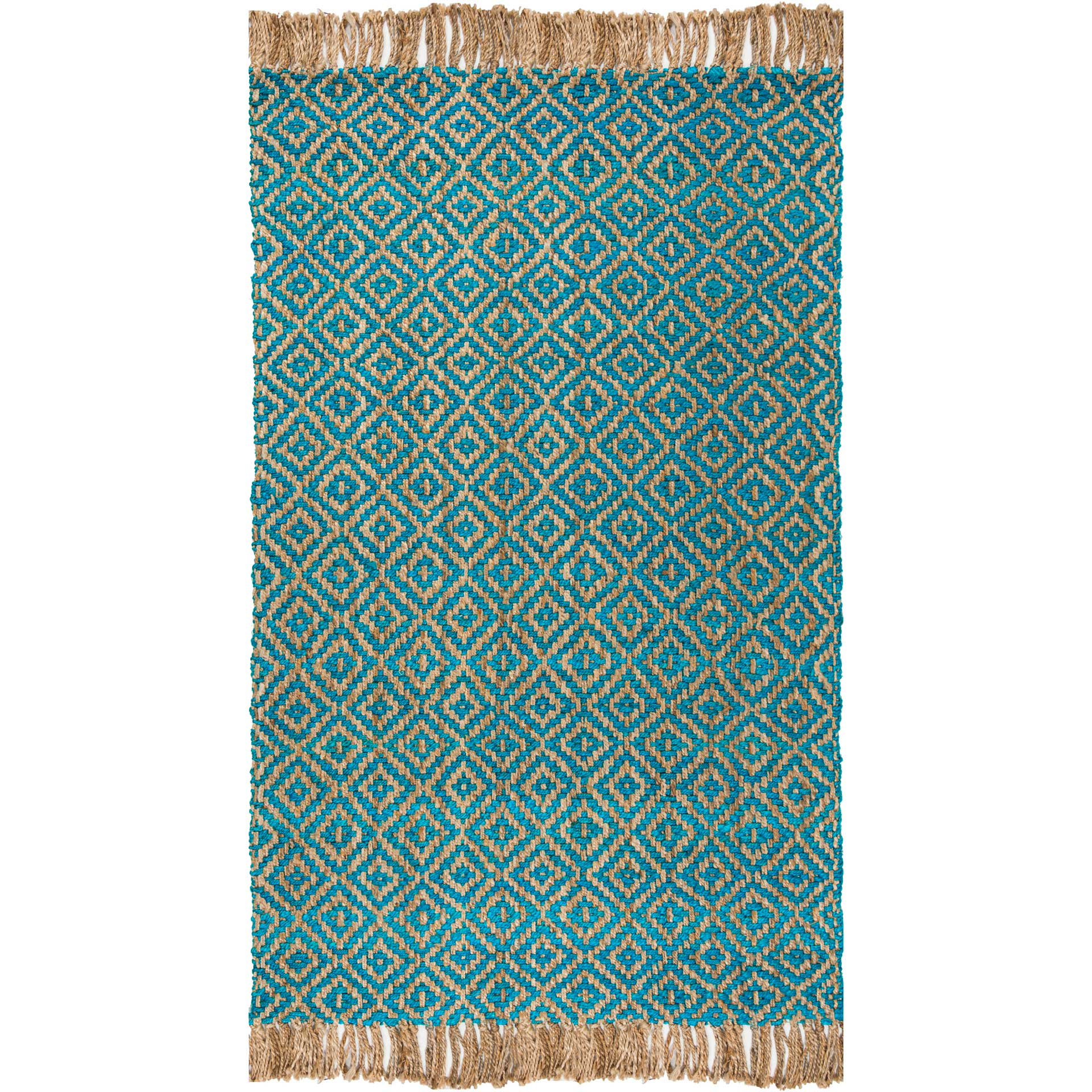 Natural Fiber Turquoise Natural Area Rug