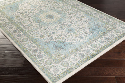Aberdine Teal/Lime Area Rug