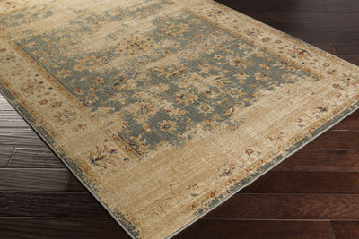 Arabesque Charcoal/Beige/Gold Area Rug