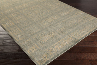 Arabesque Charcoal/Beige/Olive Area Rug
