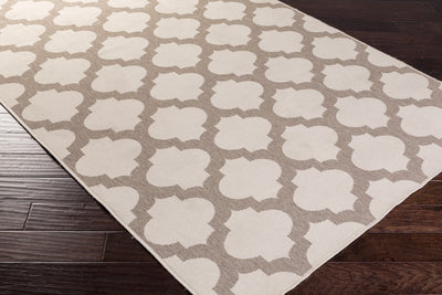 Alfresco Lattice Beige/Taupe Area Rug