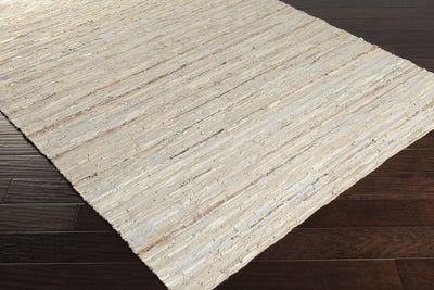 Anthracite Ivory/Beige Area Rug