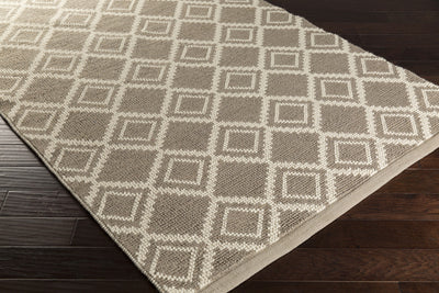 Aztec Light Gray/Ivory Area Rug