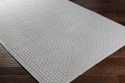 Barcelona Light Gray Area Rug