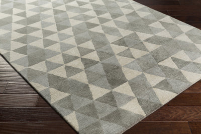 Brilliance Light Gray/Charcoal/Gray Area Rug