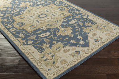 Caesar Navy/Light Gray Area Rug