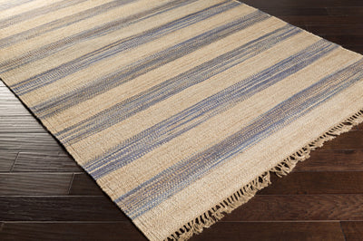 Claire Beige/Slate Area Rug