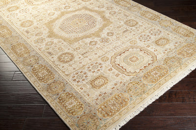Cambridge Beige/Gold Area Rug