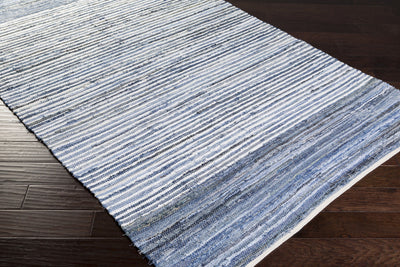 Denim Cobalt/Sky Area Rug