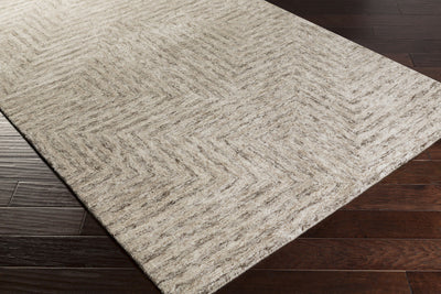 Falcon Light Gray/Taupe/Charcoal Area Rug
