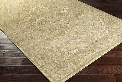 Hathaway Beige/Olive/Charcoal Area Rug