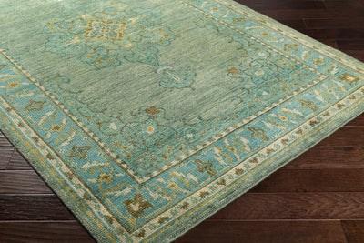 Haven Teal/Forest Area Rug