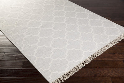 Isle Light Gray/Ivory Area Rug