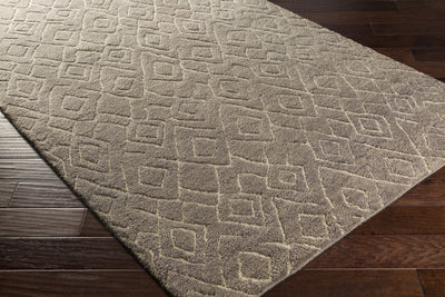 Javier Taupe/White Area Rug