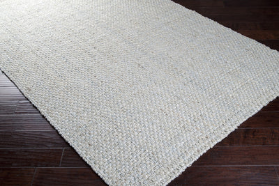 Jute Woven Light Gray Area Rug