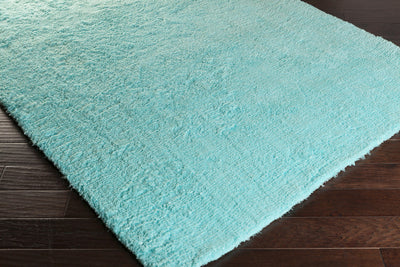 Pado Mint Area Rug