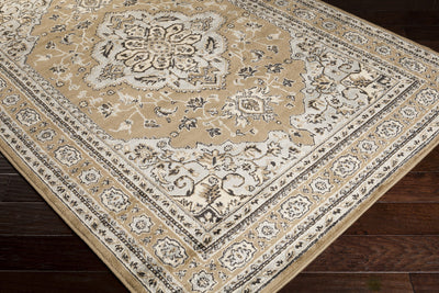 Paramount Taupe/Light Gray Area Rug