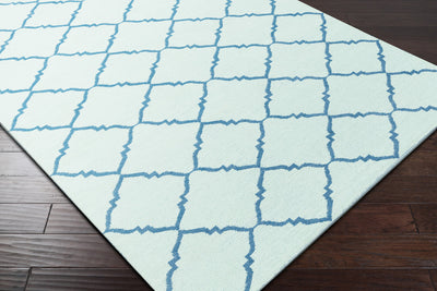Picnic Teal/Mint Area Rug