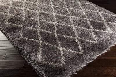 Rhapsody Charcoal/Light Gray Area Rug