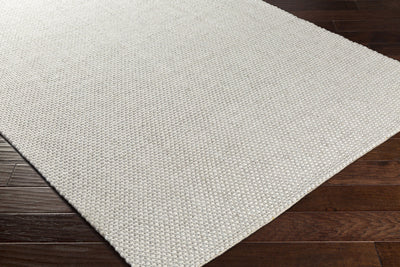 Solo Ivory/Light Gray Area Rug