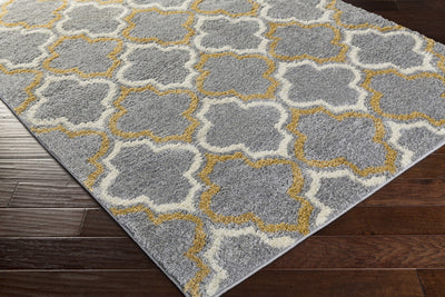 Swift Light Gray/Gold/Ivory Area Rug