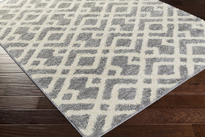 Swift Light Gray/Snow White Area Rug