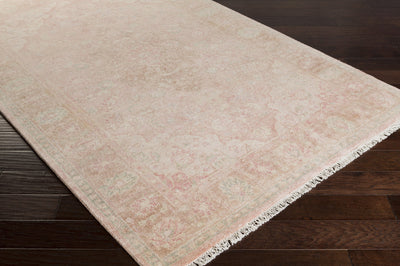 Transcendent Carnation/Tan Area Rug