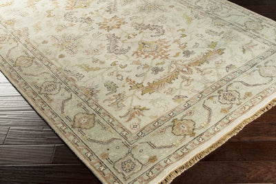 Zeus Beige/Sea Foam Area Rug