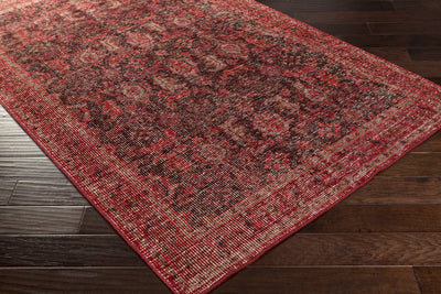 Zahra Chocolate/Cherry Area Rug