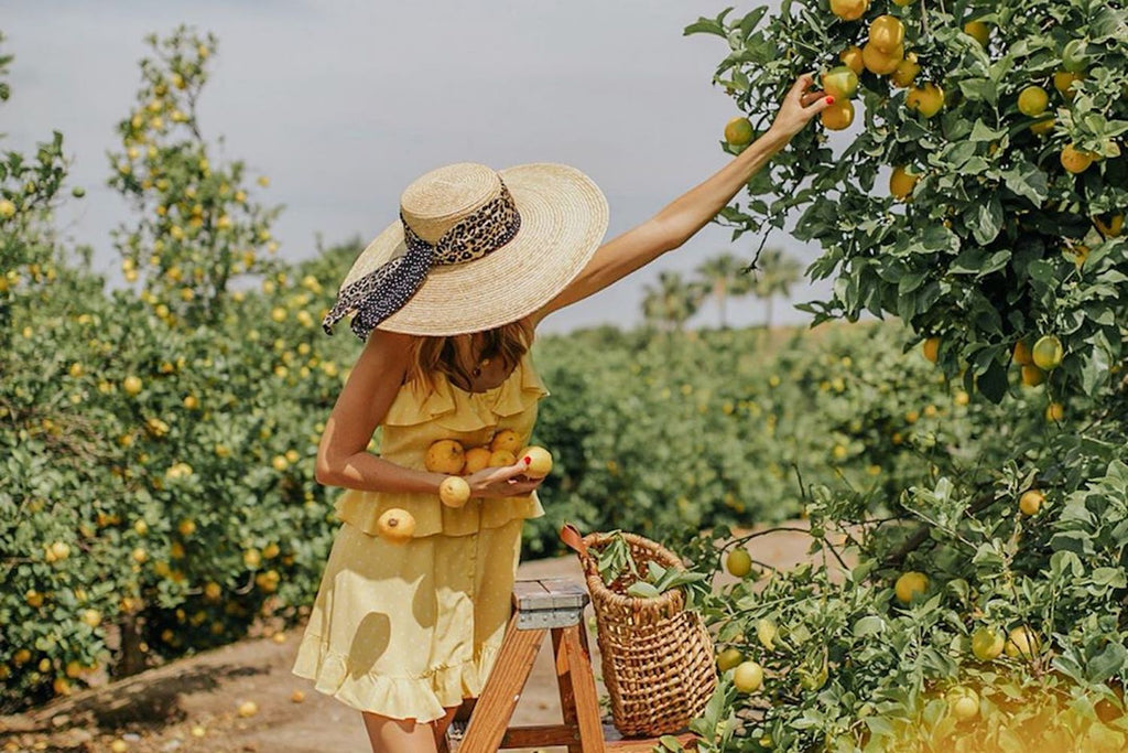 Cute Lesbian Date Night and Gift Ideas for Your Girlfriend Fruit Picking