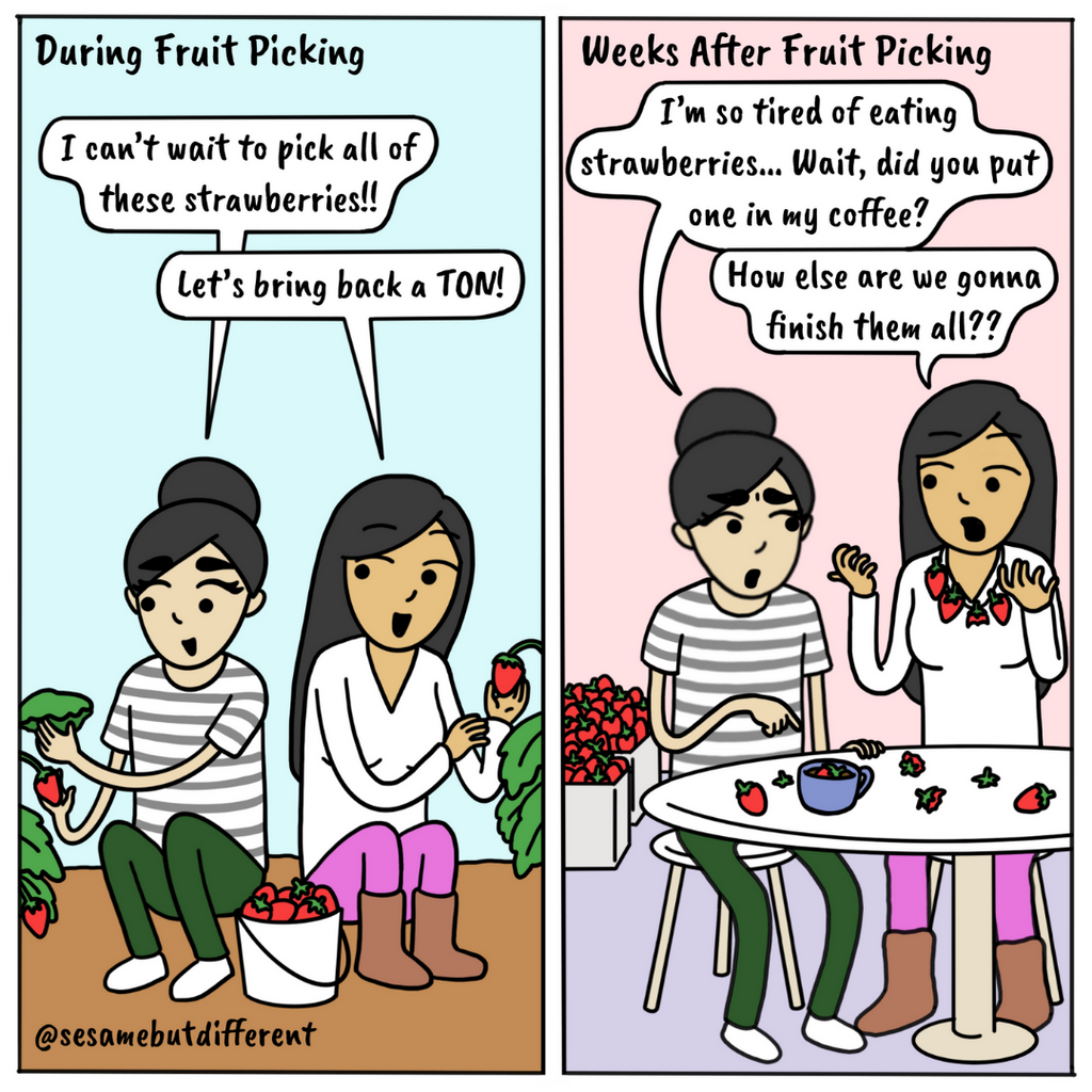 A cute lesbian relationship comic about picking fruit with your girlfriend and then eating that fruit all day every day for weeks. Check out Sesame But Different for more heartwarming lesbian comics, content, and gifts.
