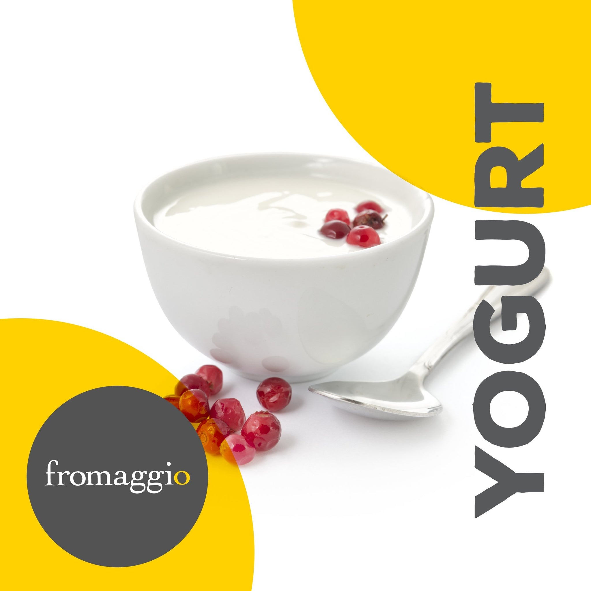 Yogurt Culture - fromaggio