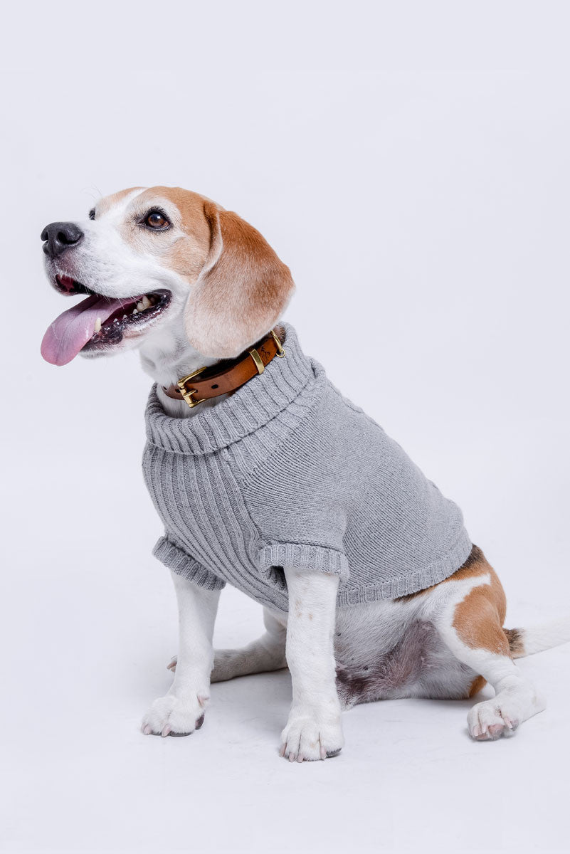 Hartsfield Cable Knit Pet Sweater